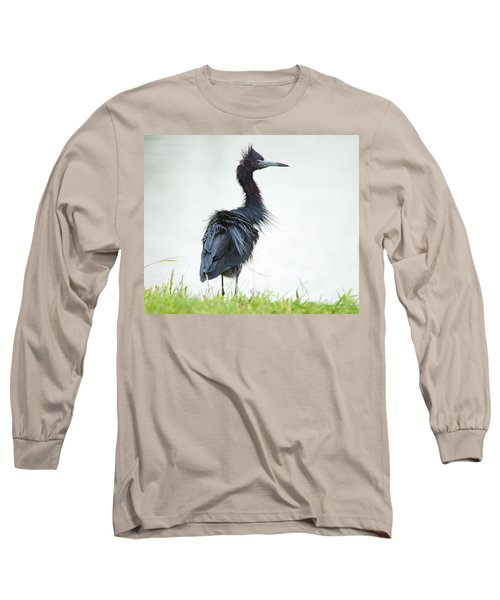 Little Blue Heron Portrait Long Sleeve T-Shirt