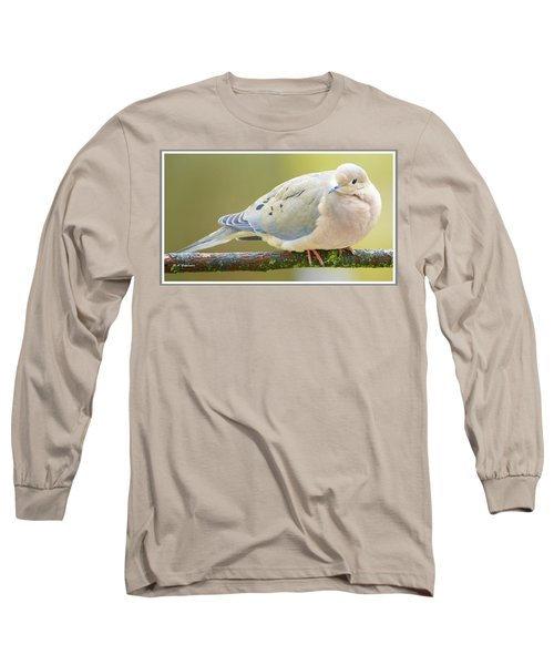 Mourning Dove On Tree Branch Long Sleeve T-Shirt by A Gurmankin