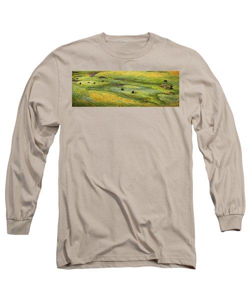 Renaissance Cave Bison Long Sleeve T-Shirt