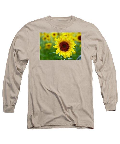 Sunflower Time Long Sleeve T-Shirt by Karen McKenzie McAdoo