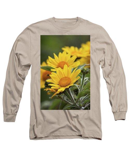 Long Sleeve T-Shirt featuring the photograph Sunflowers  by Saija Lehtonen