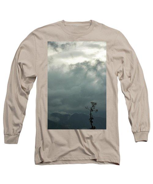Tree And Mountain  Long Sleeve T-Shirt by Rajiv Chopra