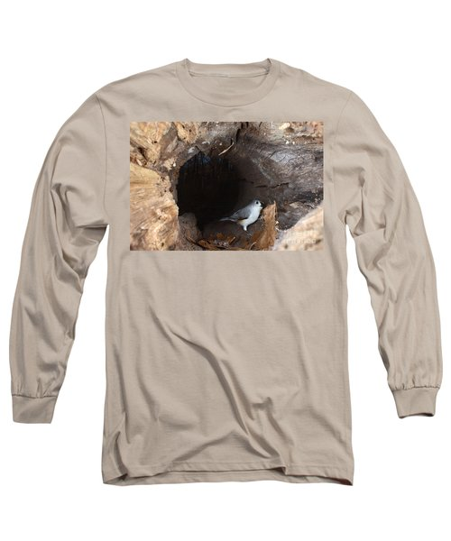 Tufted Titmouse In A Log Long Sleeve T-Shirt by Ted Kinsman