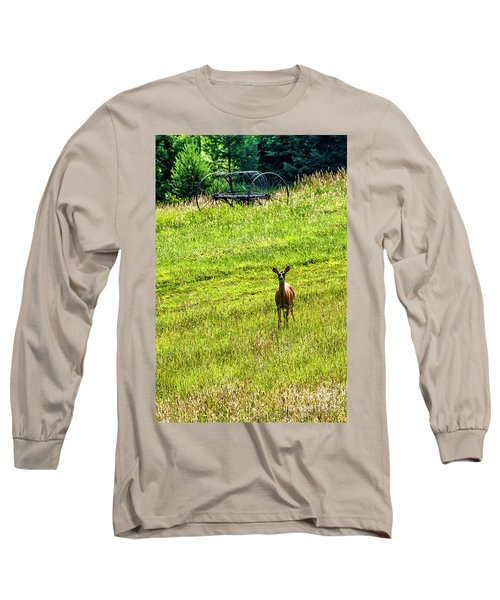 Long Sleeve T-Shirt featuring the photograph Whitetail Deer And Hay Rake by Thomas R Fletcher