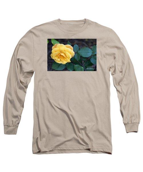 Yellow Rose Long Sleeve T-Shirt by Debra Crank
