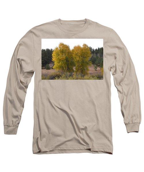 Aspen Trees In The Fall Co Long Sleeve T-Shirt