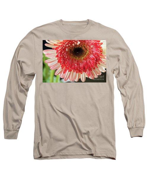 Nice Gerber Long Sleeve T-Shirt