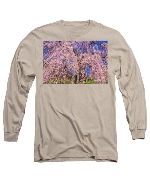 Long Sleeve T-Shirt featuring the photograph Miharu Takizakura Weeping Cherry20 by Tatsuya Atarashi