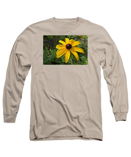 Brown Eyed Susan  Long Sleeve T-Shirt by Lyle Crump
