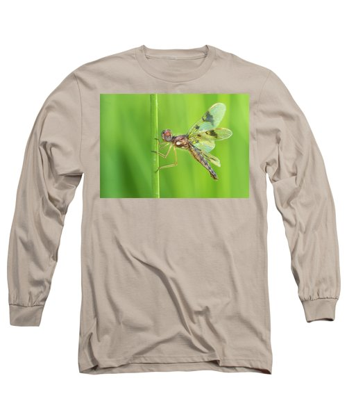 Eastern Amberwing Long Sleeve T-Shirt
