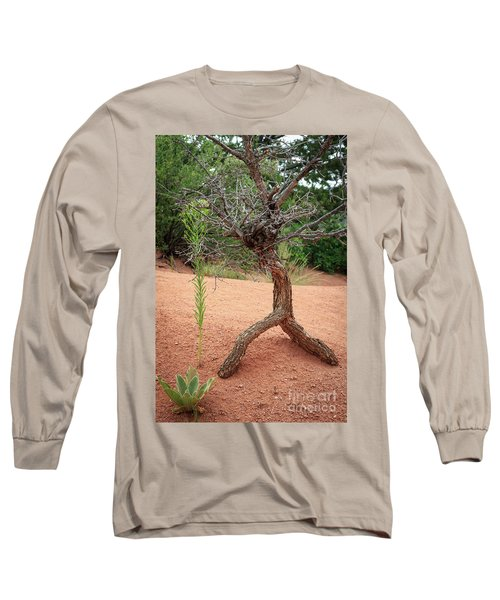 Garden Of The Gods Long Sleeve T-Shirt