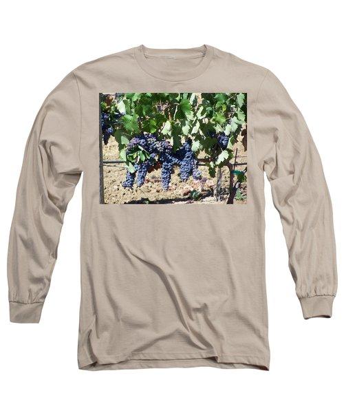 Grapevine Long Sleeve T-Shirt by Pamela Walrath