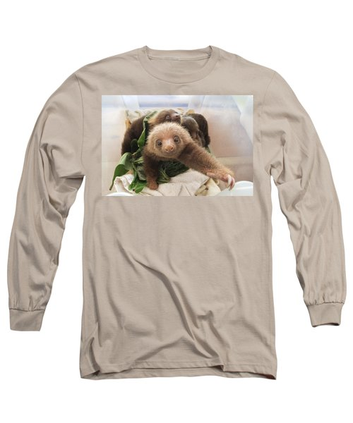 Hoffmanns Two-toed Sloth Choloepus Long Sleeve T-Shirt
