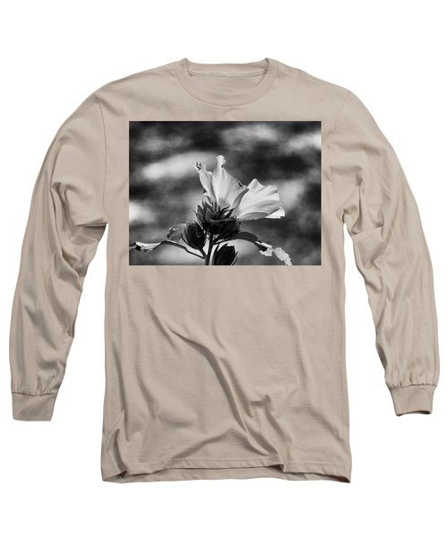 Seasons Long Sleeve T-Shirt by Allen Beilschmidt