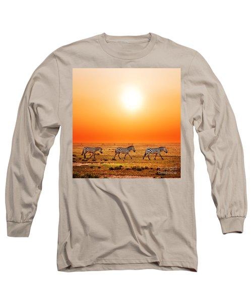 Zebras Herd On African Savanna At Sunset. Long Sleeve T-Shirt
