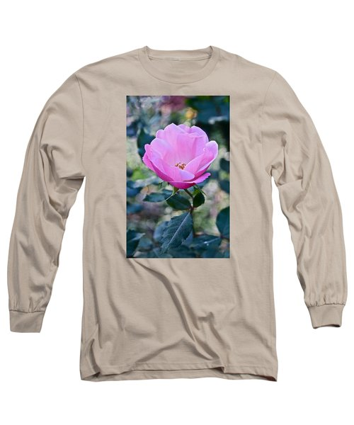 2015 After The Frost At The Garden Pink  Rose Long Sleeve T-Shirt by Janis Nussbaum Senungetuk