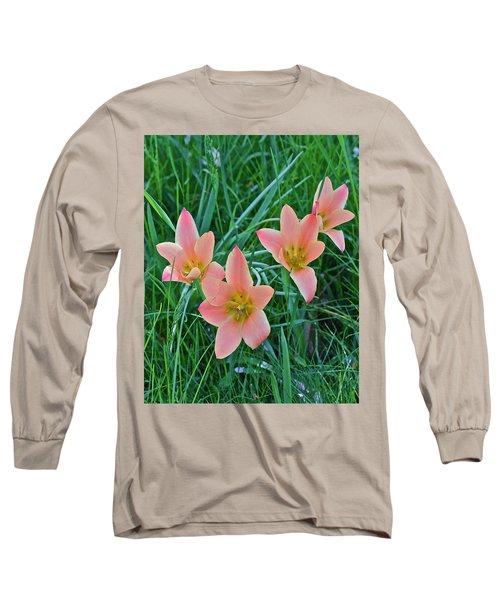 2015 Spring At The Gardens Meadow Garden Tulips 3 Long Sleeve T-Shirt