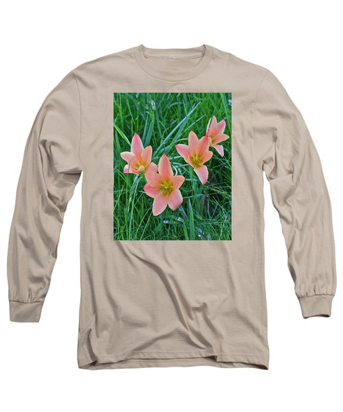 2015 Spring At The Gardens Meadow Garden Tulips 3 Long Sleeve T-Shirt