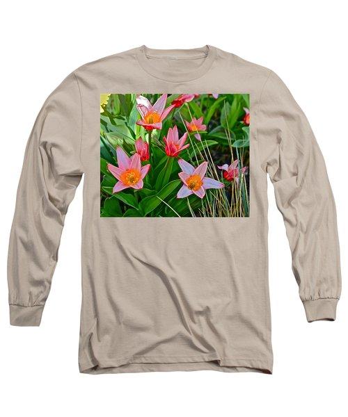 2016 Acewood Tulips 2 Long Sleeve T-Shirt