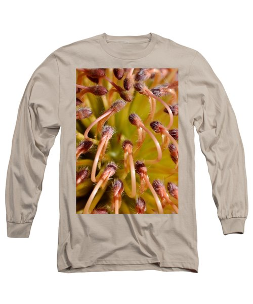 Common Pincushion Protea Long Sleeve T-Shirt by Werner Lehmann