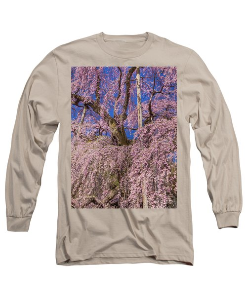 Long Sleeve T-Shirt featuring the photograph Miharu Takizakura Weeping Cherry25 by Tatsuya Atarashi