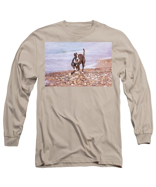 Long Sleeve T-Shirt featuring the photograph American Pitbull Terrier by Peter Lakomy
