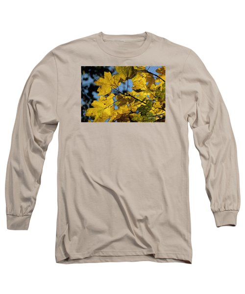 Long Sleeve T-Shirt featuring the photograph Autumn Leaves by Jean Bernard Roussilhe