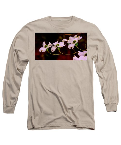 3 Dogwood Blooms On A Branch Long Sleeve T-Shirt by John Harding