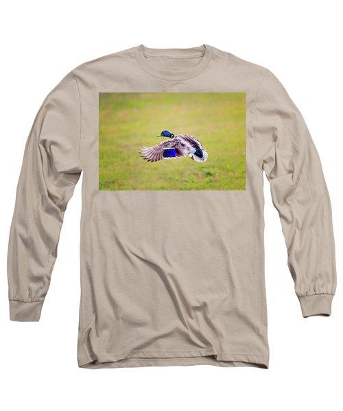 Duck-drake Long Sleeve T-Shirt