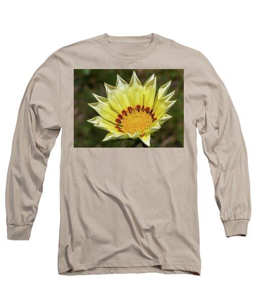 Gazania Petals Long Sleeve T-Shirt