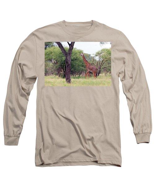 Giraffes Eating Acacia Trees Long Sleeve T-Shirt