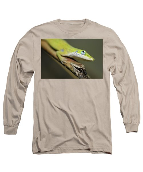 Anole Long Sleeve T-Shirt