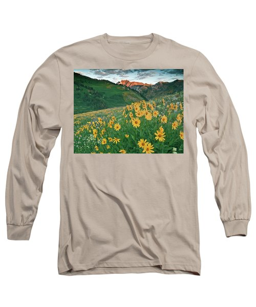 Albion Basin Wildflowers Long Sleeve T-Shirt by Utah Images