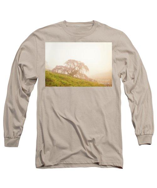 Long Sleeve T-Shirt featuring the photograph Miharu Takizakura Weeping Cherry05 by Tatsuya Atarashi