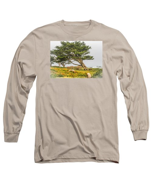 #7803 - Monterey, California Long Sleeve T-Shirt