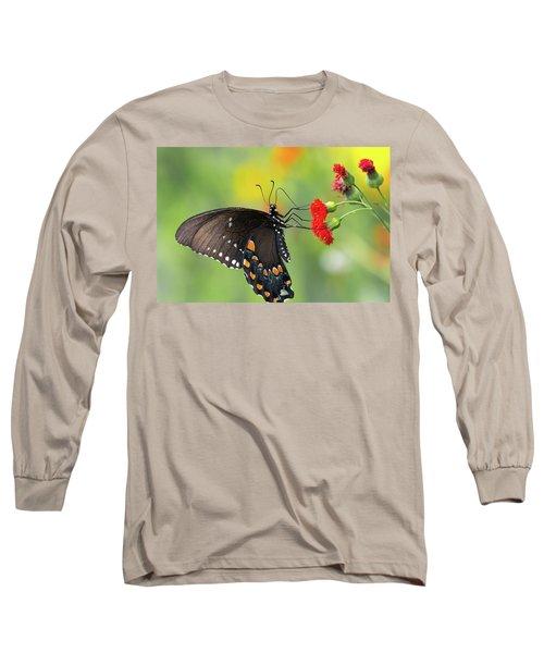 A Butterfly  Long Sleeve T-Shirt