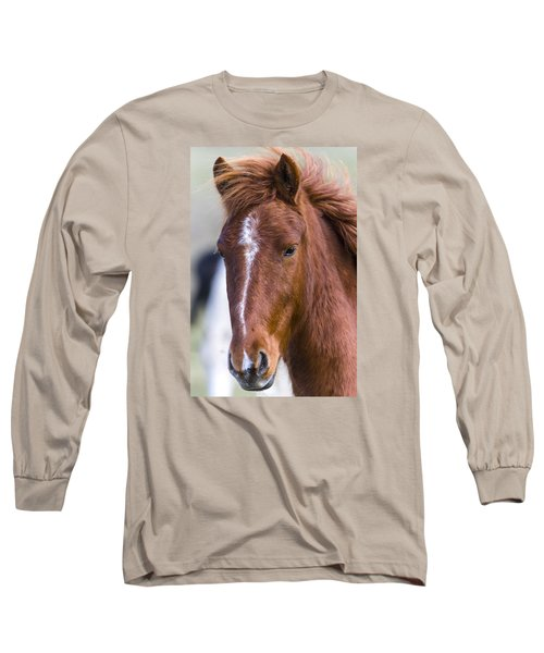 A Chestnut Horse Portrait Long Sleeve T-Shirt