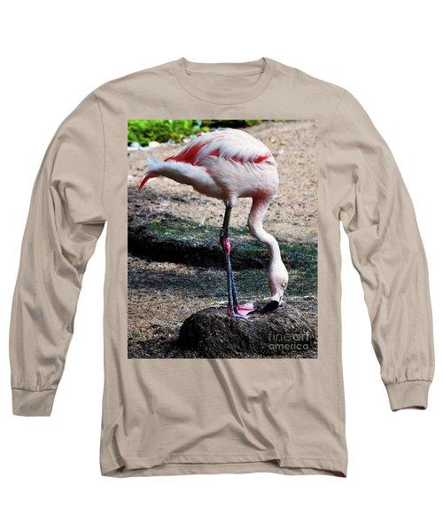 A Flamingos Take On A Headstand Long Sleeve T-Shirt