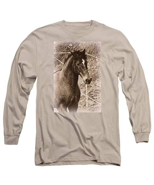 A Spanish Noble Long Sleeve T-Shirt by Clare Bevan