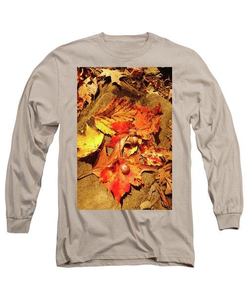 Long Sleeve T-Shirt featuring the photograph Acorns Fall Maple Leaf by Meta Gatschenberger