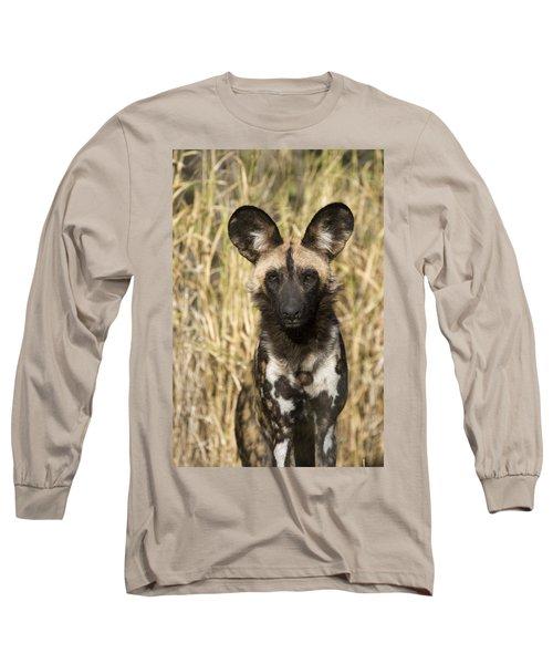 African Wild Dog Okavango Delta Botswana Long Sleeve T-Shirt