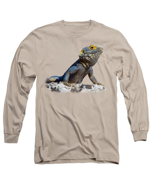 Agama Basking On A Rock T-shirt Long Sleeve T-Shirt