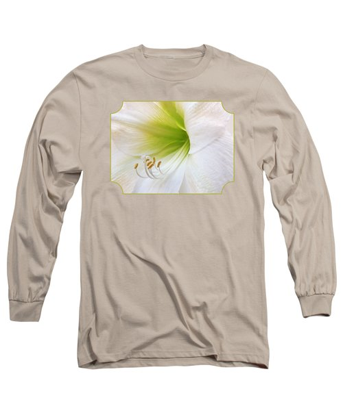Alluring Amaryllis Square Long Sleeve T-Shirt