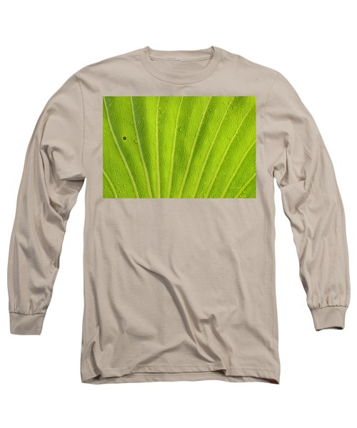 Almost Perfect Long Sleeve T-Shirt