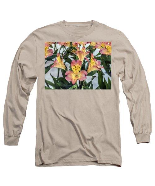 Alstroemeria Blossoms Long Sleeve T-Shirt