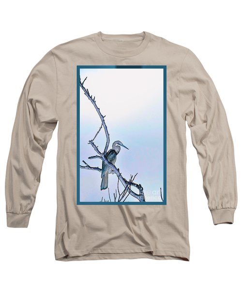Anhinga In Blue Long Sleeve T-Shirt by Pamela Blizzard