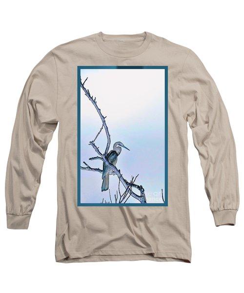 Anhinga In Blue Long Sleeve T-Shirt