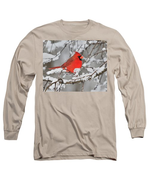 Long Sleeve T-Shirt featuring the photograph Anticipation by Tony Beck
