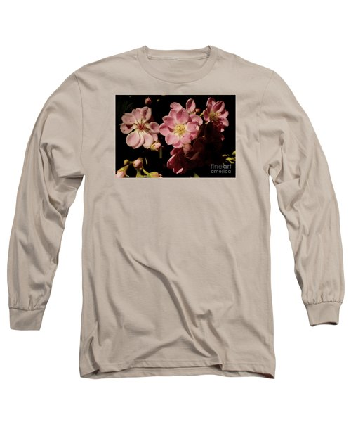 Apple Blossoms IIi Long Sleeve T-Shirt
