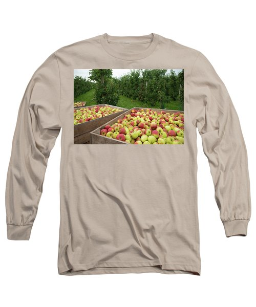 Apple Harvest Long Sleeve T-Shirt by Hans Engbers